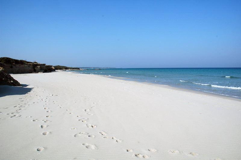 дом Сочи пляжи саленто в июне должников коммунальным