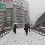 【雪道の転倒防止は、靴底をチェック!】 http://t.co/Y3A4pa7gae 毎冬1~2月は、ニュースや新聞で雪道での転倒事故がよく報道されます。中でも、朝6.. http://t.co/XsWQnbF2KR