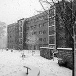 Its quite the winter wonderland once again at Endcliffe! @sheffielduni #sheffunilife #sheffieldsnow http://t.co/yBY4nkuCKq