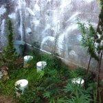 Casal tem casa invadida, chama a polícia e vai preso por plantar maconha no local http://t.co/7X4q5E0DFh  #G1 http://t.co/H2slEFe9Df