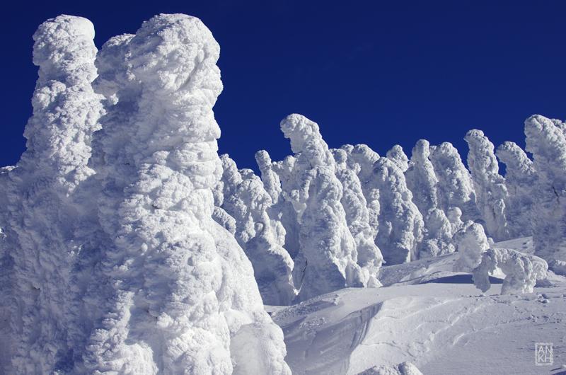 明日、東京まで出張するらしいですね。 #雪 #mysky http://t.co/e8h6cKUNpy