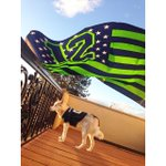 20 #Spokane pets rooting for the @Seahawks-- See all of the photos: http://t.co/lJWJ5uZg8x #GoHawks http://t.co/Mk5A0vxy2l