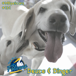 #ThrowbackThursday: Deuce and Dinger...a duo never to be matched #tbt http://t.co/uRE4NP8KHI