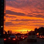How am I supposed to focus on driving? #mydayinla #nofilter http://t.co/9B9yAwmtO8