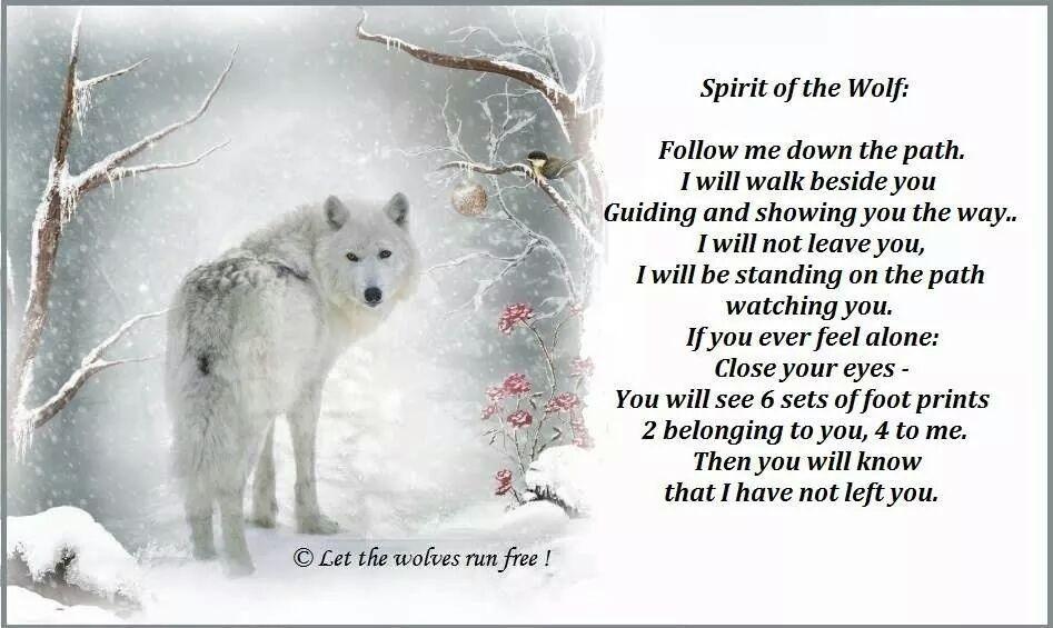 RT @k8ertot11: @proudvegan this beautiful poem came my way today 💕🐾💕 http://t.co/IPwG9V0qzf