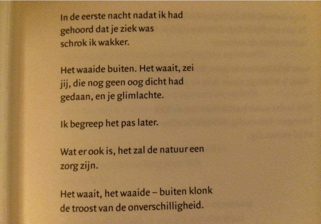 Eerste gedicht uit de laatste, hele mooie, bundel van @BoekenBrands #gedichtendag http://t.co/5eGpERyyob