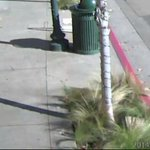 Berkeley police seek man who injured senior, stole his iPhone http://t.co/IqzKFxs6Ek http://t.co/wkCpyvMdT1