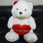 @WeLuvAllyB papa, I bought this bear for Ally, do you think she will like it? I love her so much ): http://t.co/Ai7wR5Knw5 12