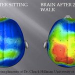 This is your brain on exercise: http://t.co/kOE8zg6cXf http://t.co/lfwvSwvmnx