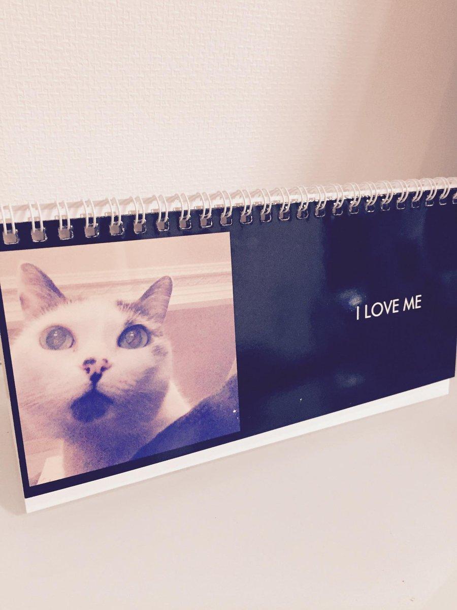 SHIGETAのアイドルキャットBettyの2015年カレンダーを3名様にプレゼント♩ 応募条件は1/30~2/6の間にこのポストをリツイートするだけ!!当選者にはDMをお送りします♩#cats #shigeta #calender http://t.co/v5RmGHEREk
