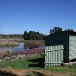 Join us for World Wetlands Day at Jerrabomberra Wetlands tomorrow http://t.co/g57IeT4EuJ @666canberra http://t.co/hXRBu0rwXW