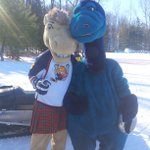 #KempenfeltKelly is ready to kick some #CharlieHorse butt @SkiSnowValley #MashBash today! http://t.co/yAyXTpRf46
