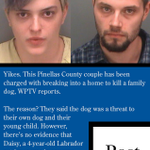 """Deputies said these people killed a dog with an IV filled with """"unknown medication."""" Were stunned. http://t.co/5G1sLFrMNK"""