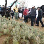 .@WMPhoenixOpen 2nd round photos: Tiger Woods and cactus; fans and rain, much more - http://t.co/H2VSGyMs0j http://t.co/2pgk16NUi5