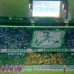 Le superbe hommage à Junior Malanda rendu par les fans de Wolfsburg avant le coup denvoi du match face au Bayern ! http://t.co/zpCHow8PL2