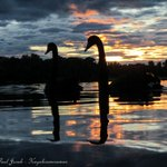 A lovely morning to swan around on #LBG and catch a gorgeous sunrise #Canberra #Visitcanberra #Canon http://t.co/nGXoZq97T8