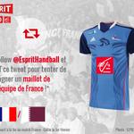 Follow + RT pour tenter de gagner le dernier maillot de léquipe de France pour #Qatar2015 ! 😃 #EspritHandball http://t.co/LultcrAdx3