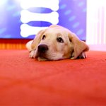 Happy Friday! Check out the week that was for @WranglerTODAY... http://t.co/nRGzM1p7EV