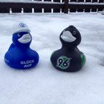 Na endlich wieder! #Matchday 😍💪@Hannover96 @s04 #S04H96 http://t.co/Ryrkgfh6Dd
