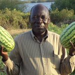 Why grow what everyone else is farming? #SeedsOfGold http://t.co/Wu6M0eZaQR http://t.co/1MVOpk3g9X