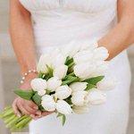 Букет невесты из тюльпанов http://t.co/moWqbPMkuo http://t.co/BNJPrYXVOY