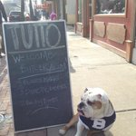Great @ButlerAlumni crowd on hand at Tutto today. Feeling the love. Ready for some hoops! #BigDawgsTour #GoDawgs http://t.co/tpMf3XR56A