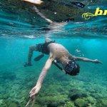 Bintang Nglambor Snorkeling @PantaiNglambor @JogjaMedia @BerandaJogja @jpmpjogja @TentangGK @LetsGonesia http://t.co/iSetaHfu5i