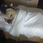 +1 RT @Patriots: Too excited to sleep! http://t.co/UQEMfv2R7g