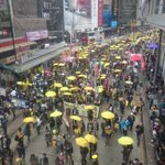 Protesters united in a sea of yellow umbrellas as #HongKong sees its first democracy rally since end of #Occupyhk http://t.co/OS9ulSPIiQ