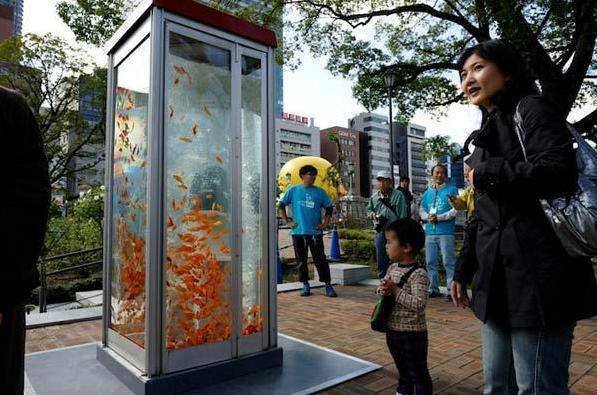 Public phones are outdated due to cellular phones so the phone booths were converted to Aquariums in Osaka, Japan. http://t.co/71uVPme4UF