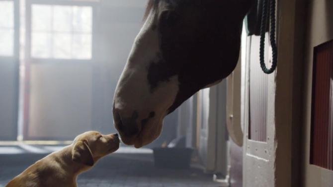 Do SuperBowl ad previews sacrifice the element of surprise?
