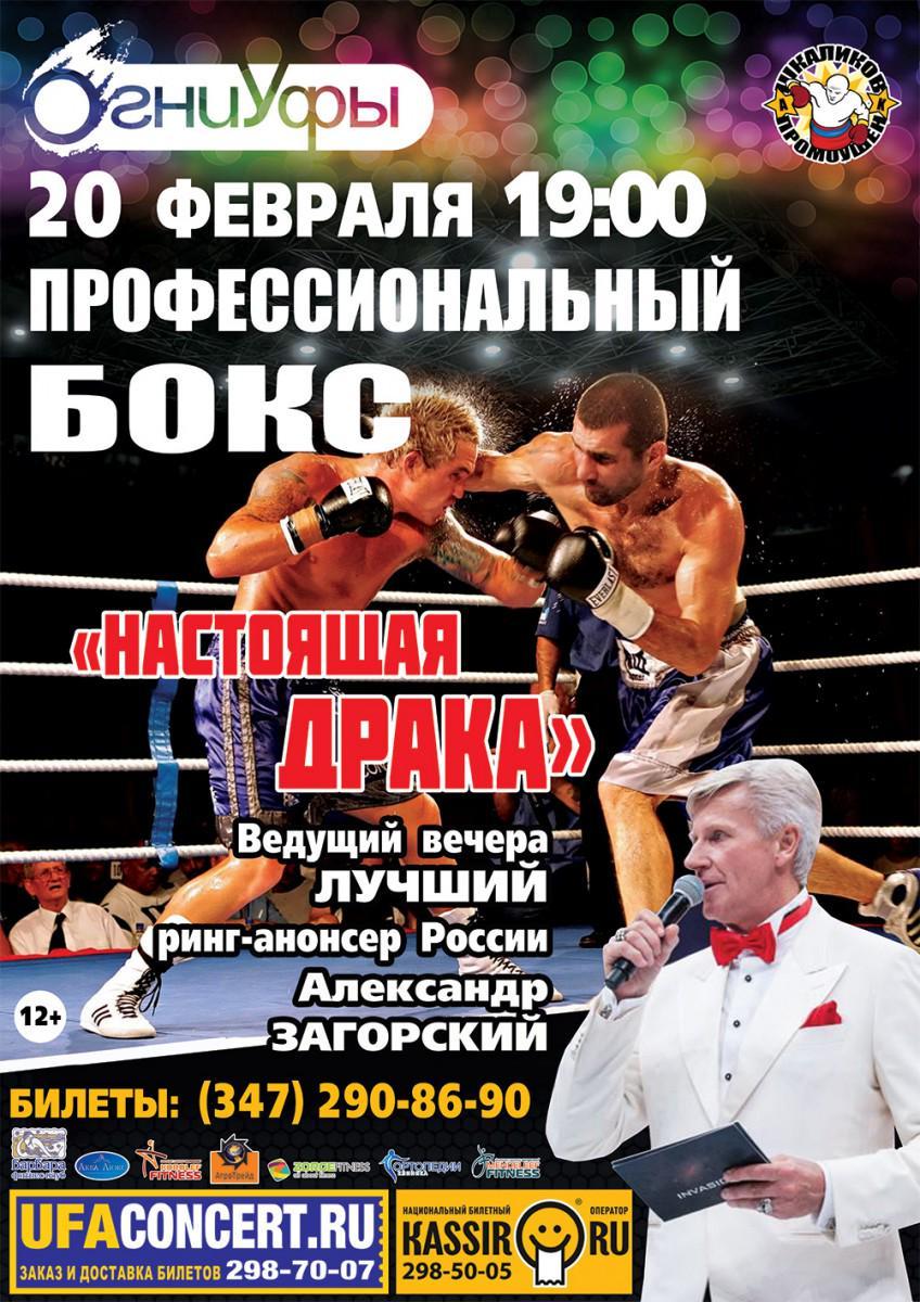 Три башкирских боксера - рустем фатхуллин