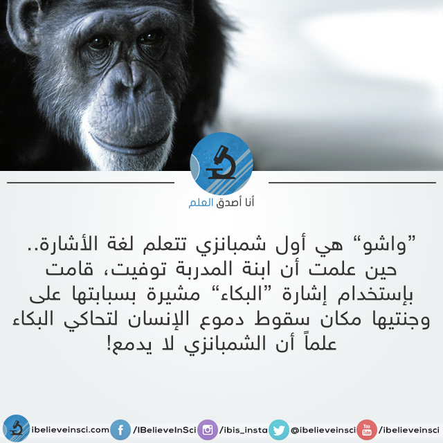 هل تعلم؟ http://t.co/XlHgcOEUAO