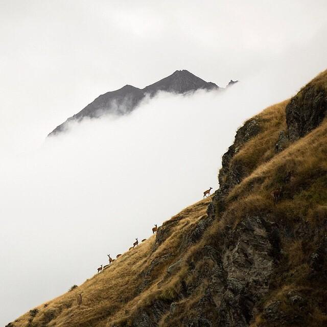 Check out these hikers in Otago, New Zealand! Photo by MatadorN reader @andrewpavlidis. T…