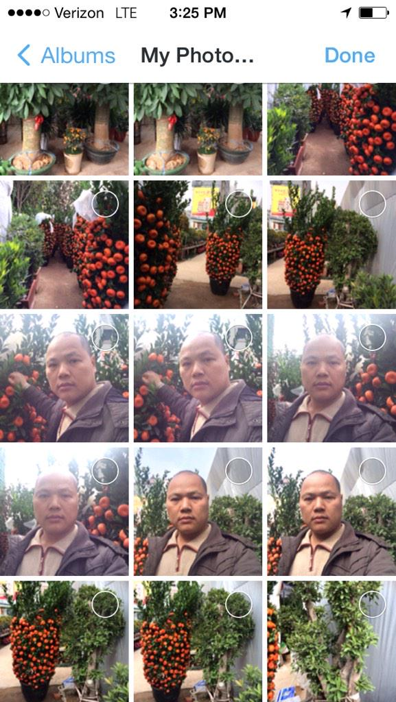 Matt Stopera (@mattstopera): Um, I just looked at my phone's photo stream and it's full of pics of some guy and an orange tree I def didn't take. http://t.co/s8srj6HCga