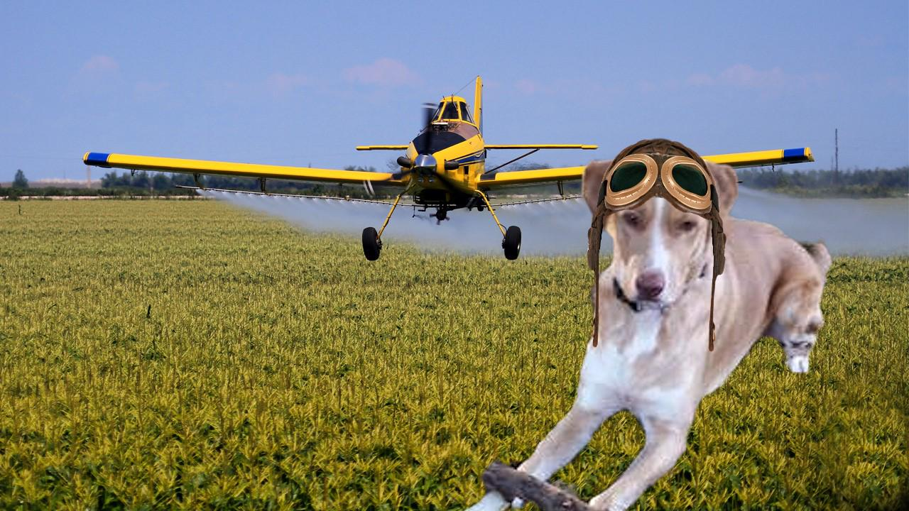 Molly! MT @ToddyFur:...  your goggles for #TheAviators and your crop duster plane @MollyGirlHound I hope you like it. http://t.co/0FowW3zMSx