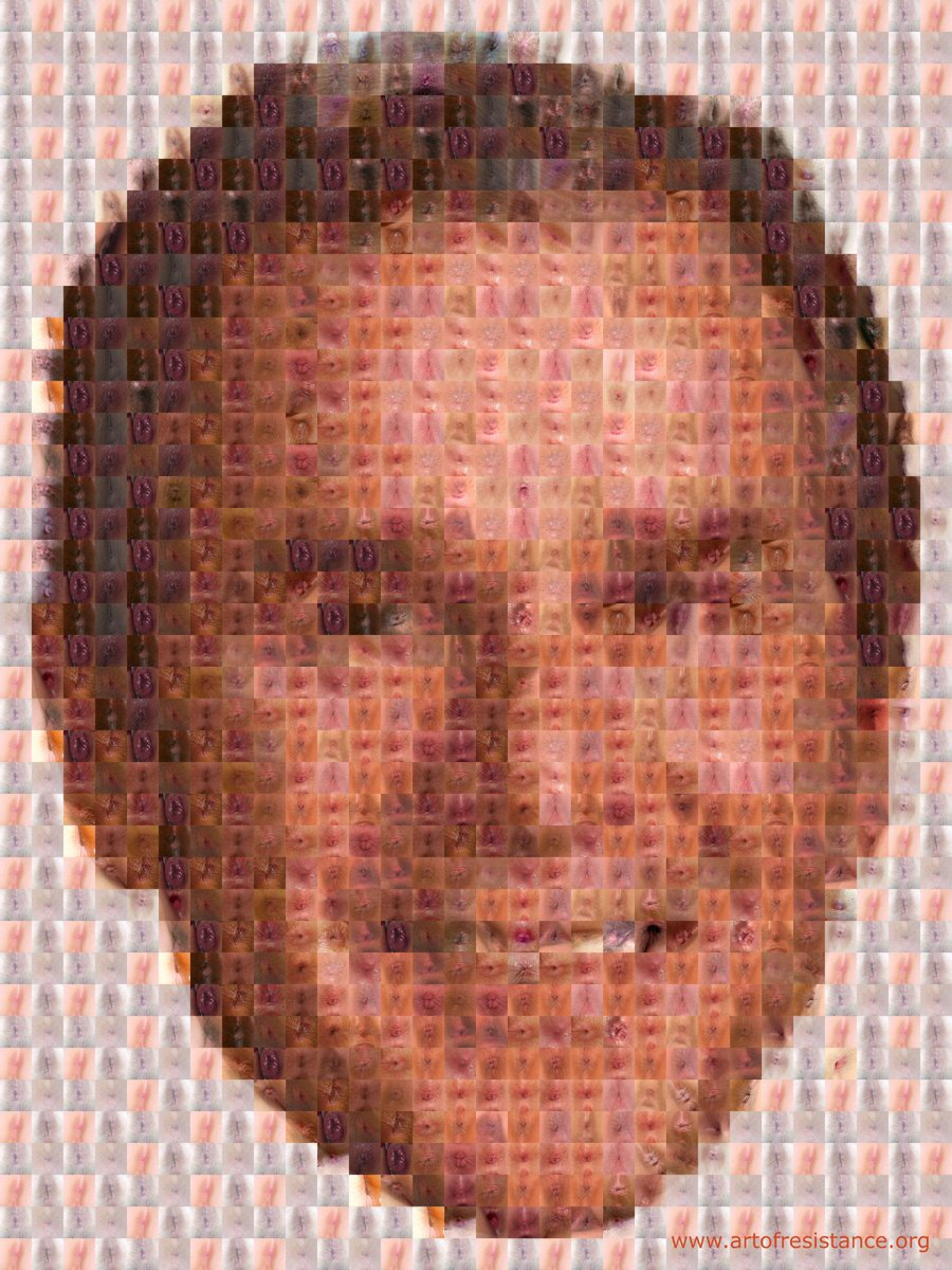 A collage picture of George W. Bush made entirely of tiny pictures of assholes http://t.co/7TM7Jy1Ft6 http://t.co/qW23JA5lnJ