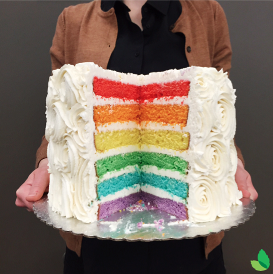 This cake is dressed for winter. #layers http://t.co/EDJ8TNVlr8