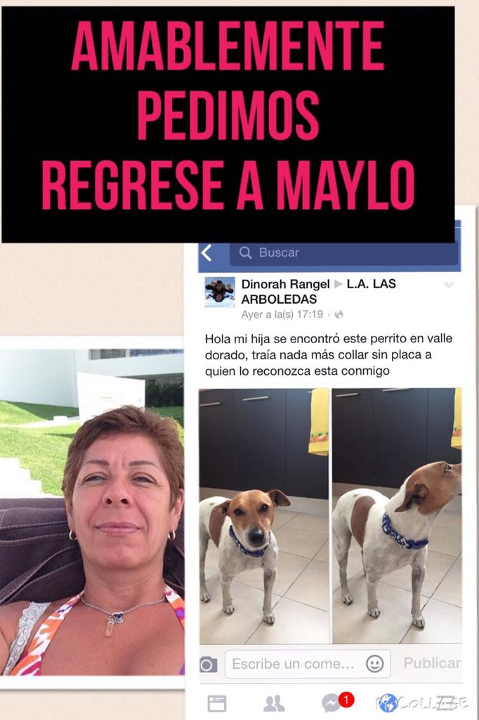 Florentino Limon  (@h2olimonreal): HELP @rebecadealba @VILLALVAZO13 @gloriacalzada @PedroFerriz @AlineUrbiola @HanniaNovell @SeleneAvilaTV @gtlaseca GRX http://t.co/p2xxcPpIDN