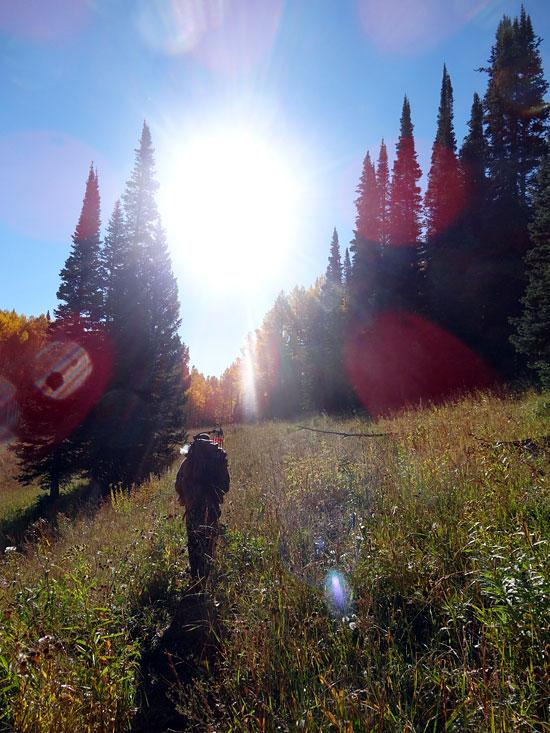 Advice For A Solo Elk Hunt http://t.co/nbAxLImx8F #hunting #bowhuntin #elk #rmef http://t.co/LmEyvtwjc6