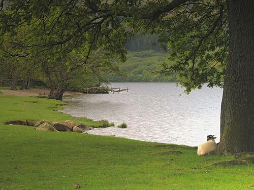 He leads me beside still waters and makes me to lie down in green pastures. Ps23 #GodsLoveChats http://t.co/CeV1nVpGe1
