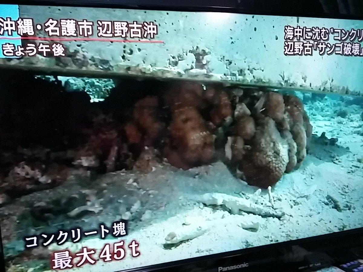 #安倍晋三  RT @genpatunerima: 辺野古でサンゴ破壊!防衛局の暴挙糾弾!! 報道ステーションより http://t.co/dhpLEv4XLN