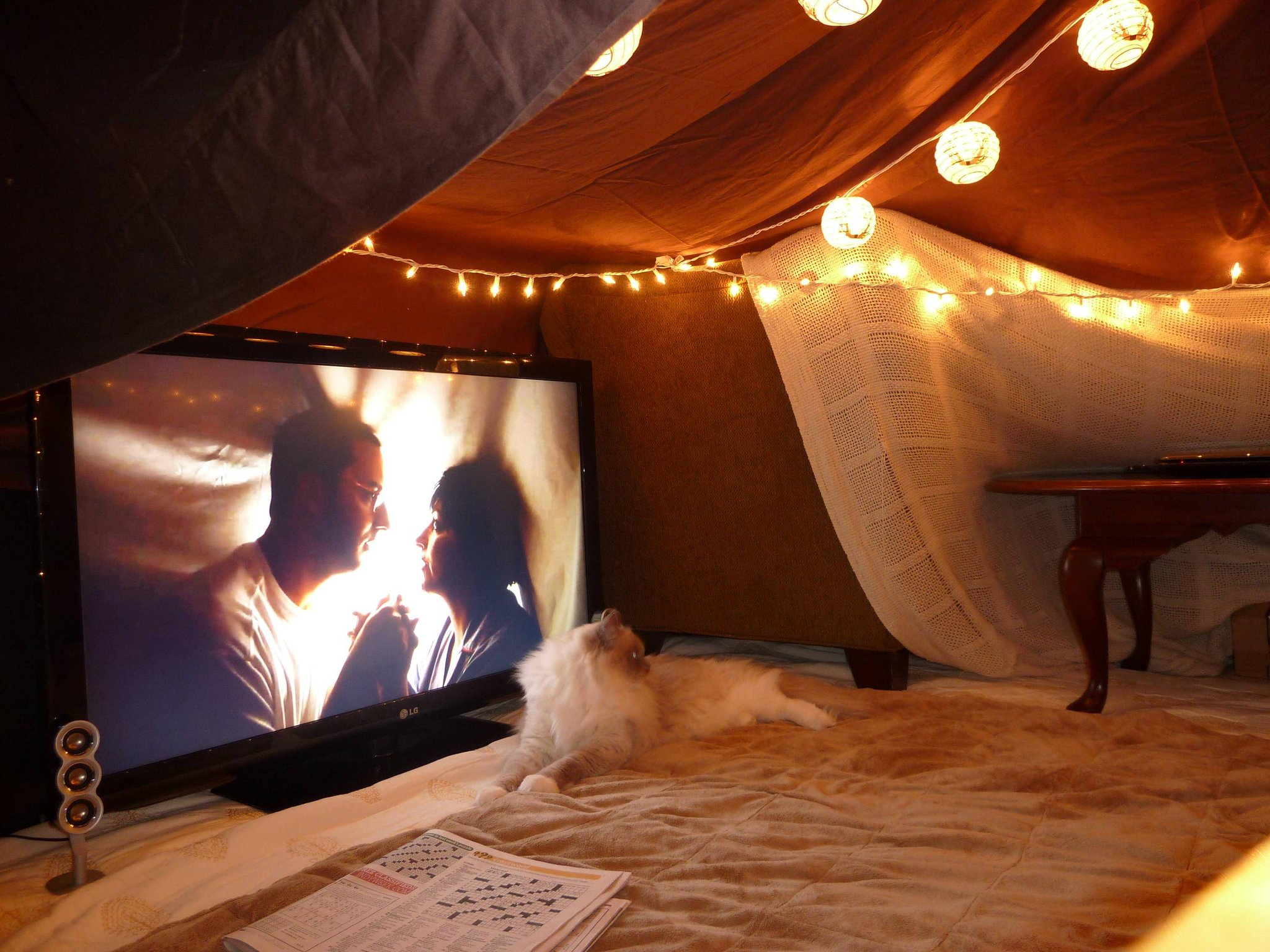 When adults build blanket forts! http://t.co/hp2TYYkAY6