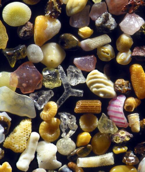 Conrad Hackett (@conradhackett): Sand, magnified over 100 times, looks like this   http://t.co/jBAeNfmHcO http://t.co/zu3LPqk9Vb