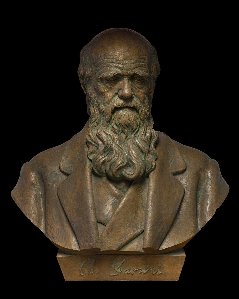 Happy Birthday to Charles Darwin! The famed naturalist was born #OTD in 1809. #DarwinDay http://t.co/vJpyNKH4SC http://t.co/97jFRIi0bS