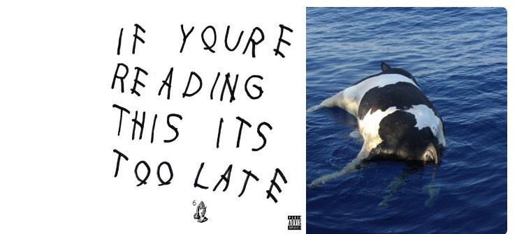 Drake's Album Cover Does Look Like A Suicide Note From A Chick-Fil-A Cow
