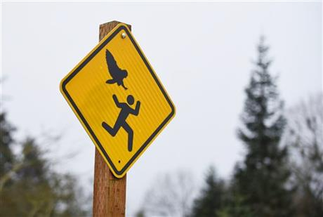 I'm a big fan of odd street/traffic signs. This is the greatest thing ever: http://t.co/wTzahVD9CF
