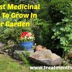 #Mention Treatment Herbs @Treatment_Herbs #bizitalk https://t.co/vlIQqarsPk https://t.co/5n1TidkWAY #sm #bizitalk
