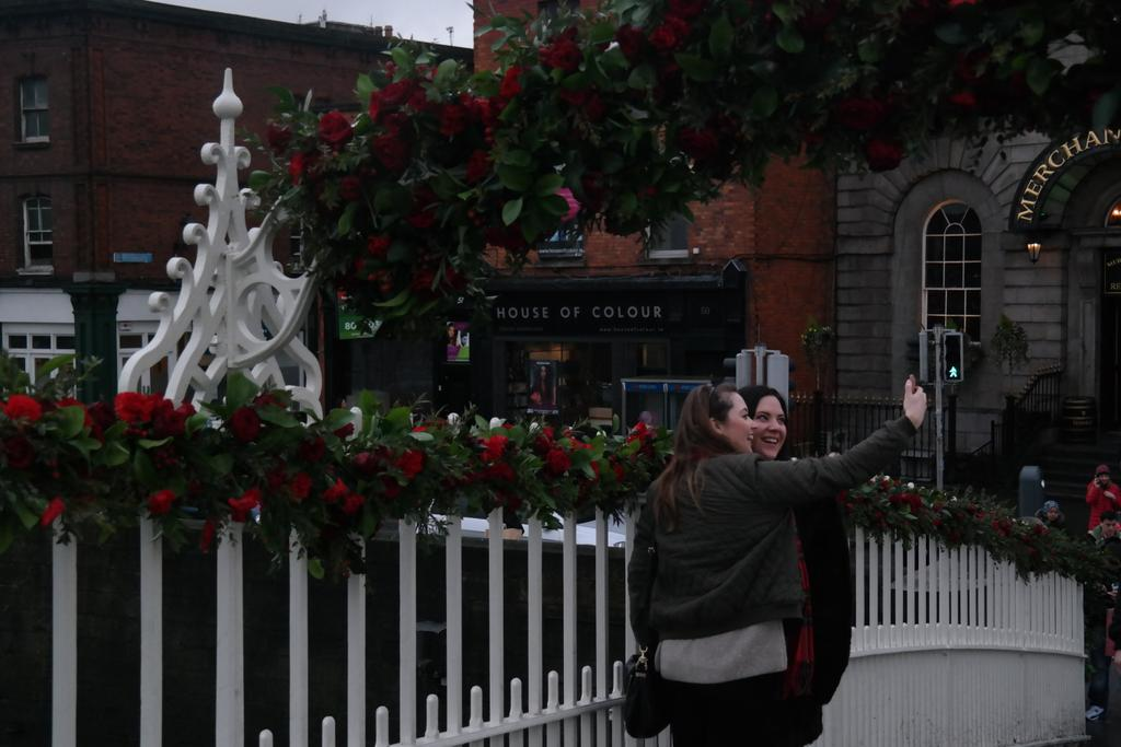 Beautiful sight on the Ha'penny bridge today with all them roses for all them valentines