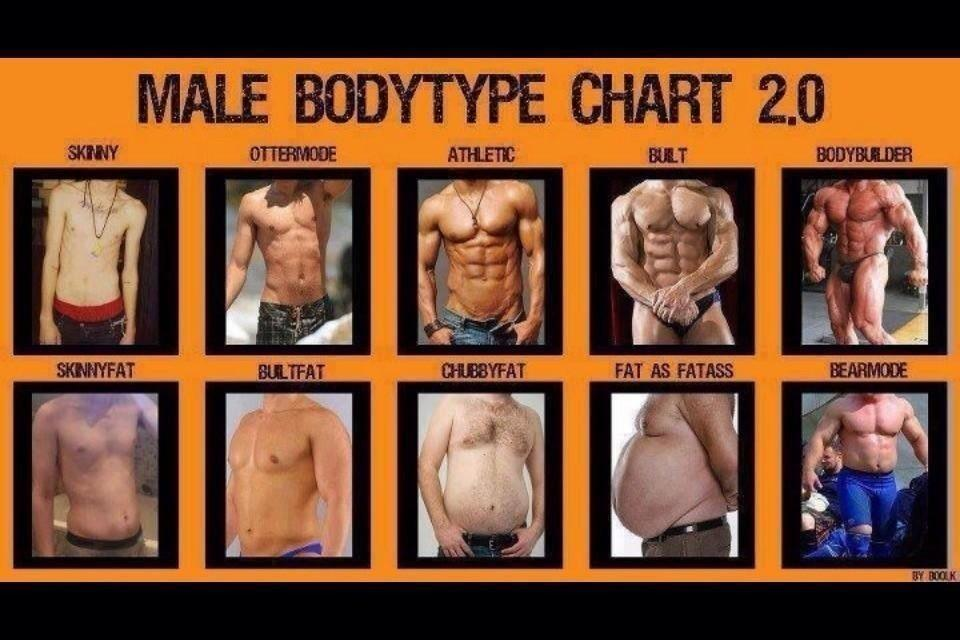 Ideal body type for a male? - GirlsAskGuys